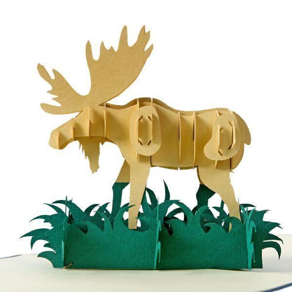 Thiep 3D con vật